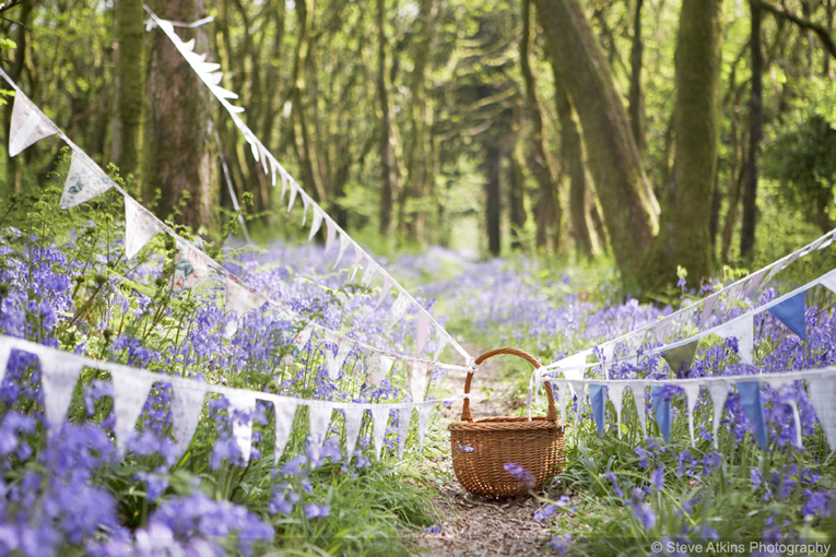 bunting strung from a wicker basket in a woodland full of bluebells