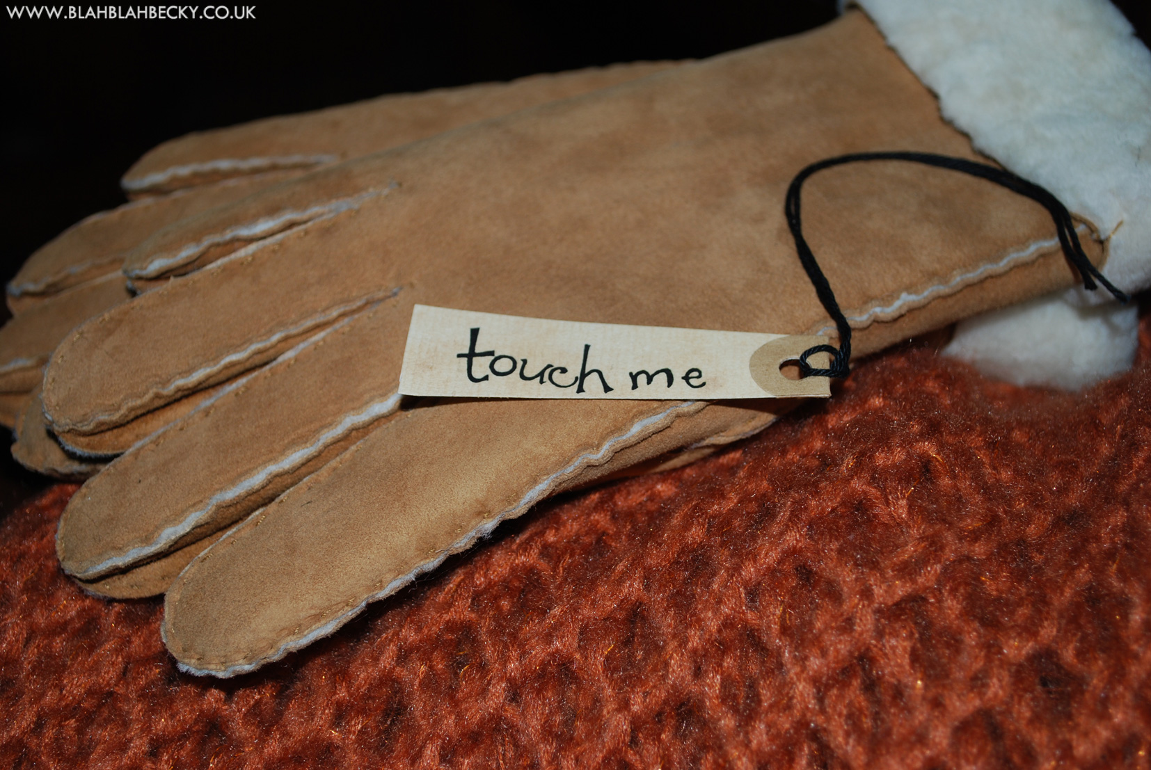 Sheepskin Gloves touch me label
